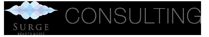 CONSULTING・コンサルティング_Surge・株式会社サージ| 兵庫県神戸市|美容・コスメ・日用品・食品|卸売・総合商社| 美容サロン様への商品提案・コンサルタント|会員向けショップ運営